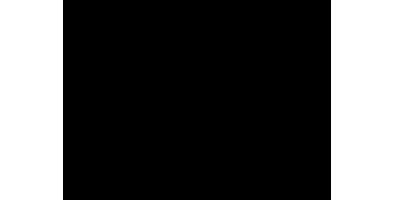 Arenadoras